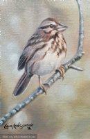 Song Sparrow Comic Art